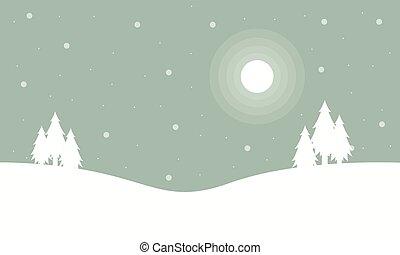 arbre noël, paysage hiver, nuit