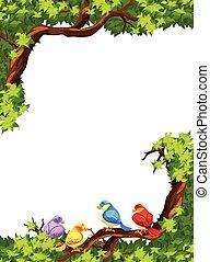 arbre, oiseaux, branche