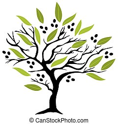 arbre, olive