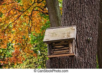 arbre, parc, birdhouse