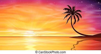 arbre, paume, coucher soleil, levers de soleil