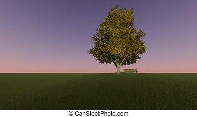 arbre, paysage vert, arrière-plan., colline, banc