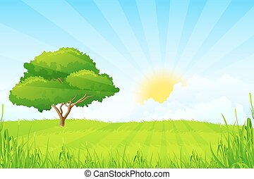 arbre, paysage vert