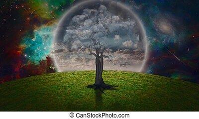 arbre, pelouse verte, nuage