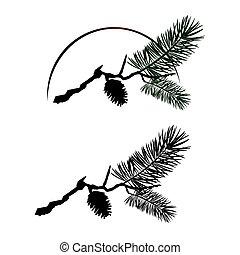 arbre, pin, branche