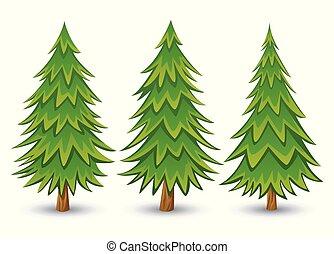 arbre, pin, collection