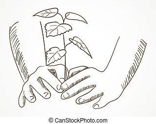 Planter croquis arbre croquis pelle plant arbre - Croquis arbre ...