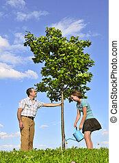 arbre plantant