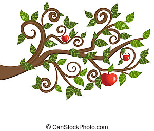 arbre, pomme, branche