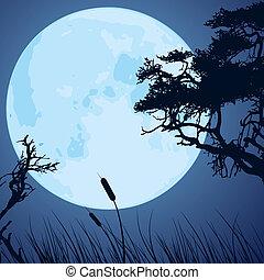arbre, silhouettes, branches, lune