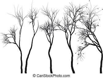 arbre, silhouettes, vecteur