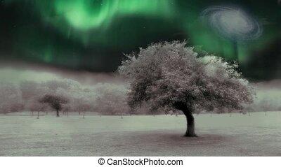 arbre, surréaliste, paysage