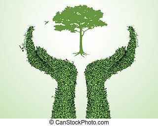 arbre, tenant main