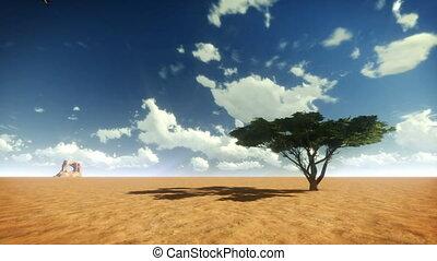 arbre, tl, ciel, oiseaux, désert