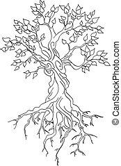arbre, tordu, coffre