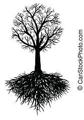 arbre, vecteur, racine