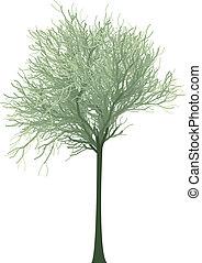 arbre, vecteur, vert, fleurir