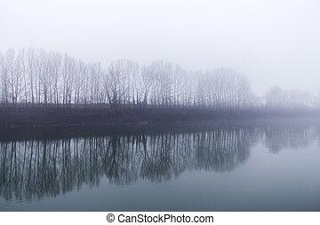 arbres, à côté de, brumeux, ligne, rivière, jour, reflète