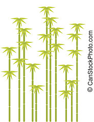 arbres bambou