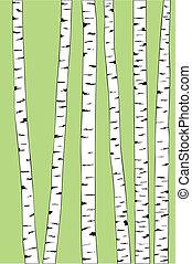 arbres bouleau, fond, coffre
