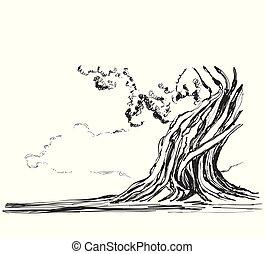 arbres., croquis, vecteur, vieux, illustration