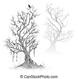 arbres morts