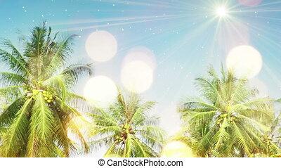arbres, paume, seamless, lumière soleil, boucle