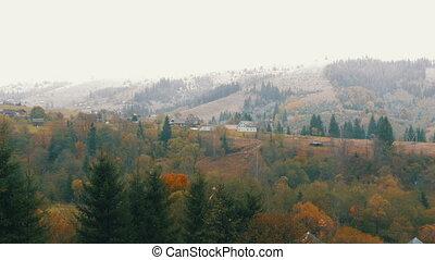 arbres, premier, carpathian, impeccable, montagnes, neige,...
