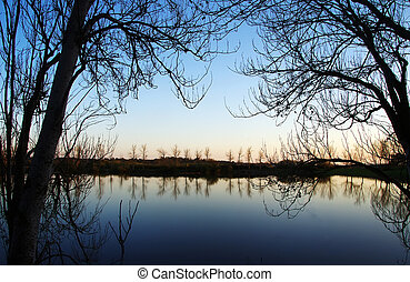 arbres, silhouetted, contre, a, lac, à, coucher soleil