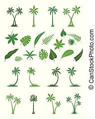 arbres., silhouettes, paume, exotique, feuilles