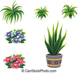 arbusto, aislado, caricatura, plano de fondo, blanco, ...