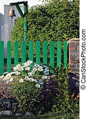 arbusto, florecer, margaritas, al lado de, verde, cerca piquete