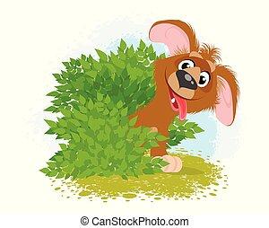 arbustos, cão, engraçado