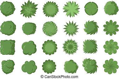 arbustos, ilustração, topo, árvores, isolado, experiência., arbustos, vetorial, vário, plan., desenho, branca, paisagem, vista