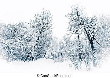 arbustos, tono azul, invierno, nieve, árboles, debajo,...