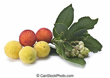 Arbutus with leaves. - Fresh arbutus fruits isolated over a...