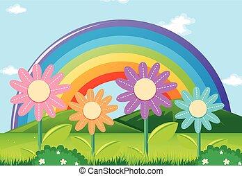 arc-en-ciel, fleurs, jardin