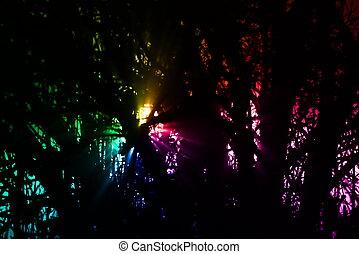 arc-en-ciel, forêt, lumières