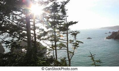 Oregon Coast - Arch rock along the Oregon Coast, pan