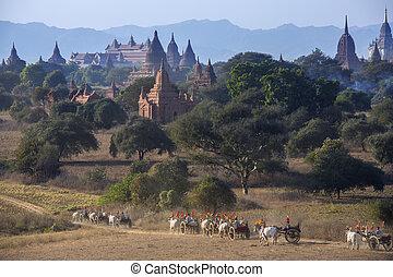 Archaeological Zone - Bagan - Myanmar (Burma)