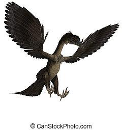 archaeopteryx., recorte, interpretación, encima, dinosaurio, trayectoria, sombra, blanco, 3d