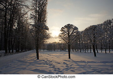 Winter outdoor park