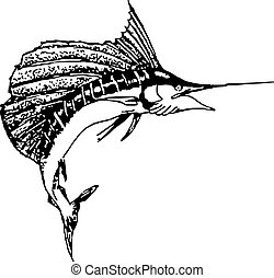 pen and ink drawing of a sail fish jumping