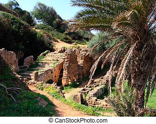 archeological roman site of Tipasa- Northern Algeria