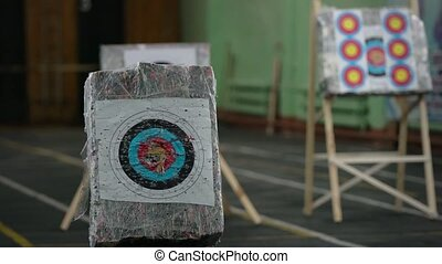 Archery - shooting arrows at printed aim marks view