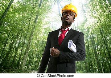archictect, em, um, ecológico, floresta, projeto