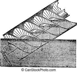 Archimedes screw or Archimedean screw, vintage engraving.