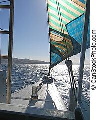 archipiélago, komodo, barco, navegación, indonesia