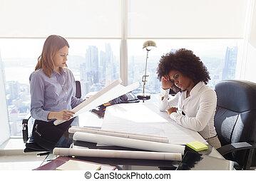 architecte, femmes, collègues, à, modèles, examiner, projet logement