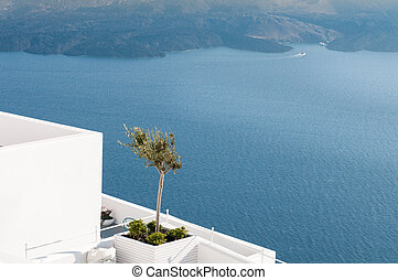 Architectural details with olive tree at Oia in Santorini, Greece.